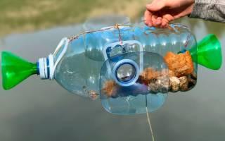 Ловим рыбу пластиковой бутылкой — Своими Руками