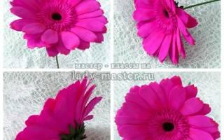 Розовая гербера из фоамирана — Своими Руками