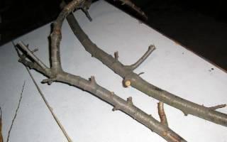 Оформление угла комнаты веткой дерева — Своими Руками