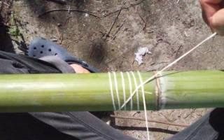 Музыкальный инструмент коренных народов Австралии – диджериду — Своими Руками