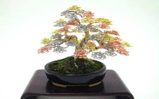 Восточное дерево из проволоки и пряжи «Бонсай» — Своими Руками