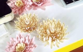 Хризантема — Своими Руками