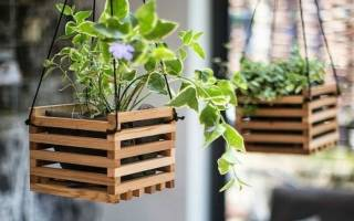 Оригинальные садовые горшки для комнатных цветов — Своими Руками