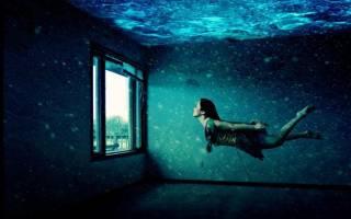 Починка освещения в аквариуме — Своими Руками