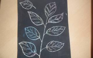 Техника рисования «Граттаж» — Своими Руками