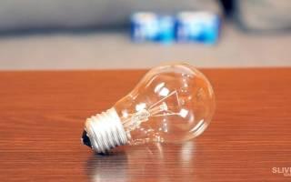 Мини-террариум в лампочке — Своими Руками